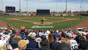 Spring Training Baseball in Peoria